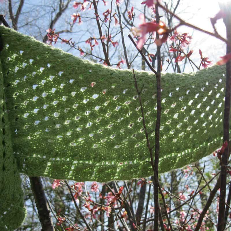 Budding Leaves Spring Shawl